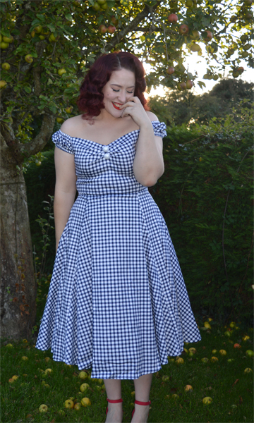 Collectif navy gingham Dolores dress