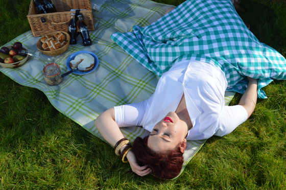 Heart of Haute Teal Green Picnic Gingham Circle Skirt Gretta Shirt