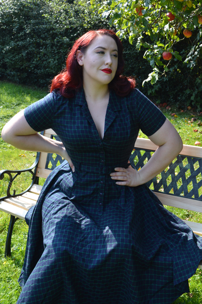 Caterina Chaise Check swing dress Collectif