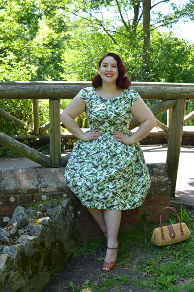 Emily and Fin Tropical Parakeets Claudia dress