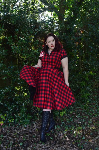 Heart of Haute Red Buffalo Gingham Dinette dress
