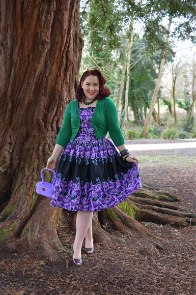 Amethyst Rose Border Dirdle dress by Lady V London Miss Amy May plus size