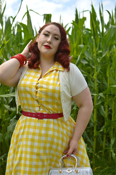 Plus size pinup Miss Amy May models the Poppy Yellow Gingham Shirtdress gifted by Dolly & Dotty for a fit and size review